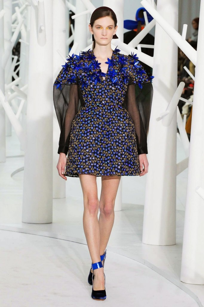 Delpozo Carly Moore_5 best fall winter trends 2015- 2016-fabulous-muses-5 best trends