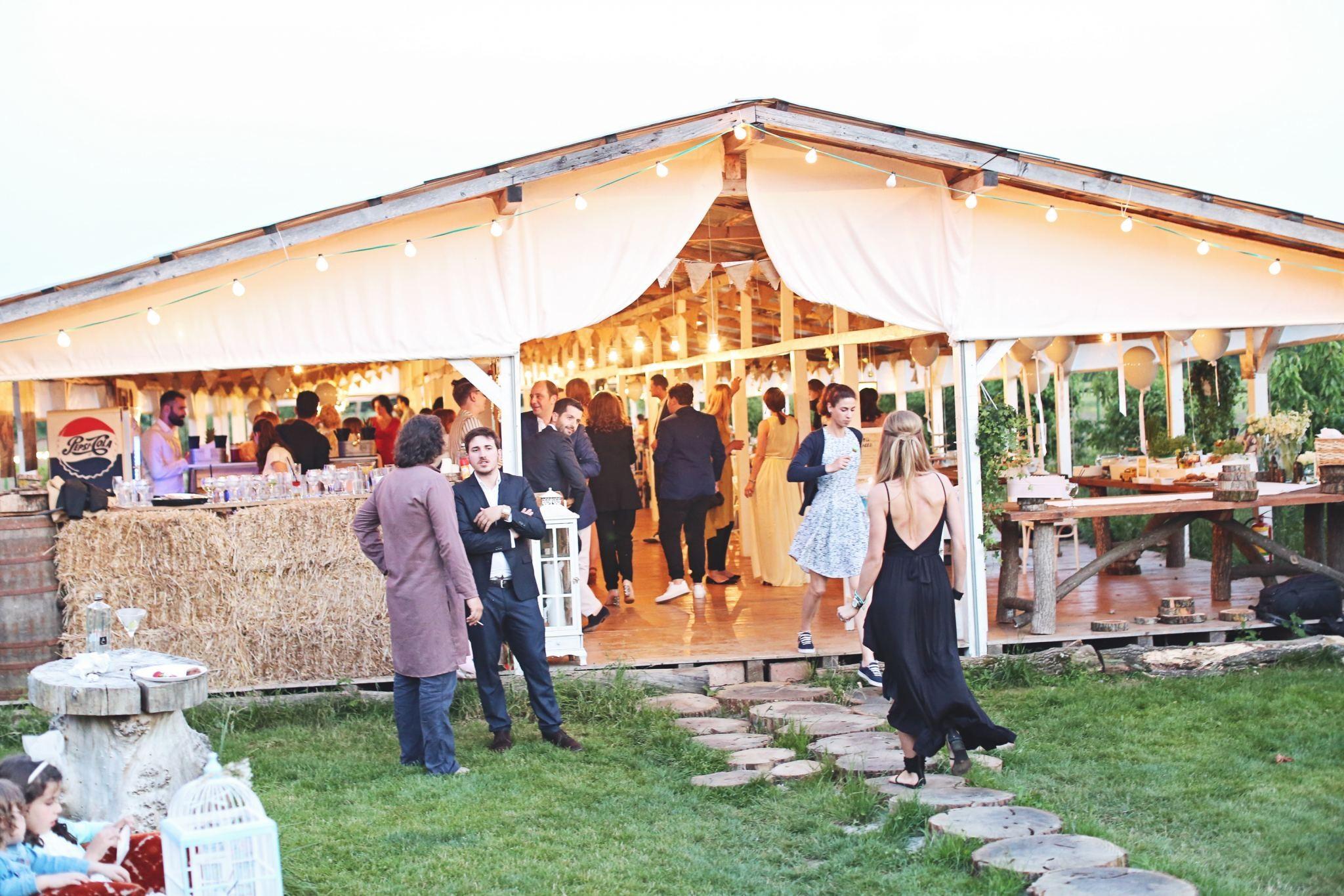 18Fabuloasasemarita_alina_tanasa_diana_enciu_fabulous_muses_blogger_wedding_famous wedding_nunta2016