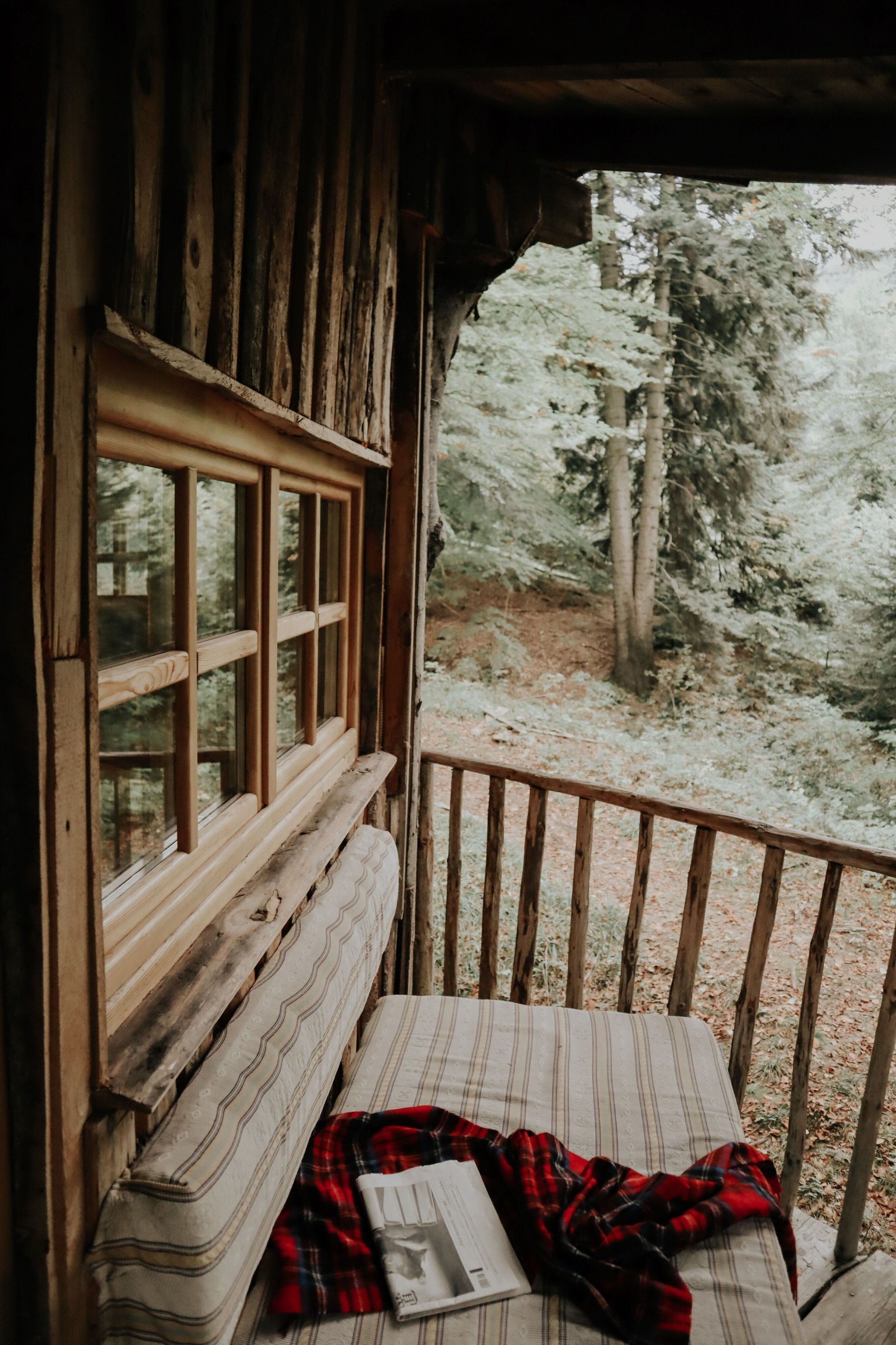 Cea mai tare cazare de la munte de la Casa din Copac de la Predeal cu Diana Enciu